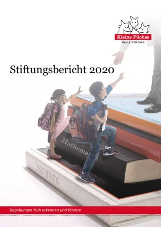 thumbnail of Stiftungsbericht-2020